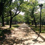 墨田区のオススメジョギングコース-錦糸公園