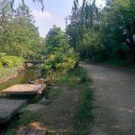 墨田区のオススメジョギングコース-大横川親水公園