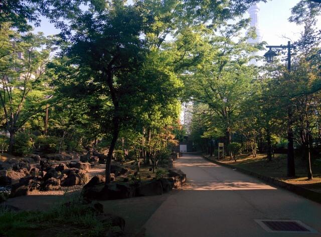 大横川親水公園花紅葉ゾーン